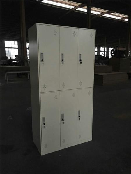 & Narrow Frame Steel Locker-6 Door pezcame.com